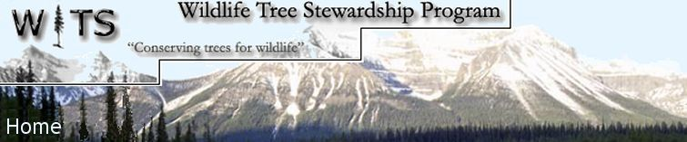 Wildlife Tree Stewardship Program Home